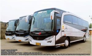 Tempat Sewa Bus Pariwisata di Jakarta