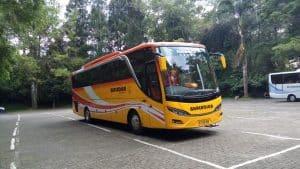 Sewa Bus Jakarta Pandeglang
