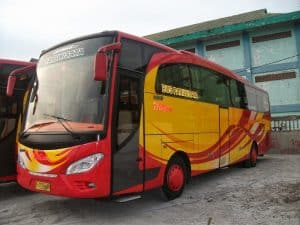 Rental Bus ke Taman Safari